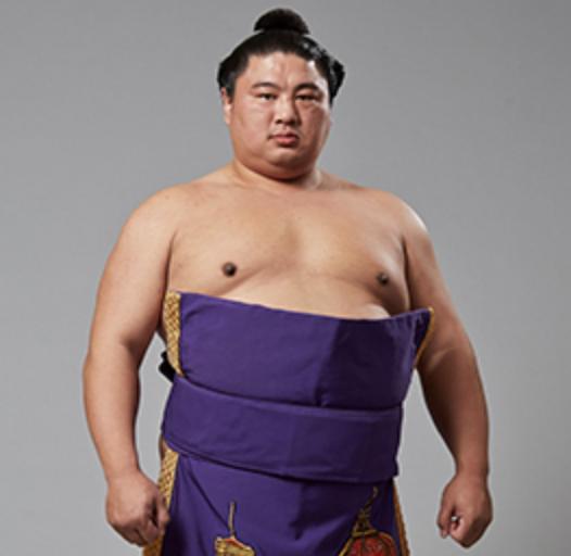 嘉風 引退報道
